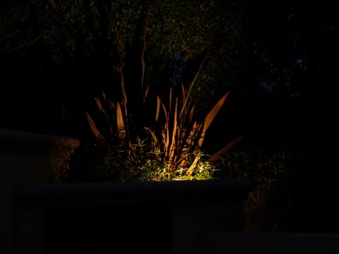 Landscape Lighting Oak Park Dramatic Lighting