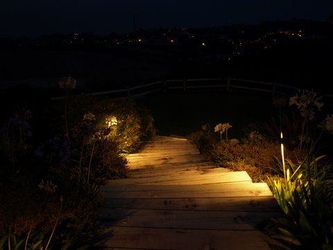 Landscape Lighting Oak Park Steps