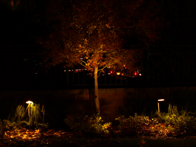 Landscape Lighting Landscape Lighting Oak Park