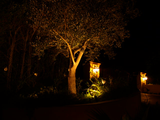 Landscape Lighting Oak Park
